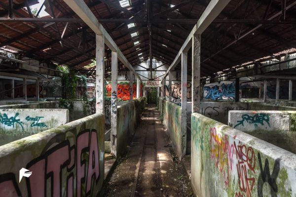 Death alley II